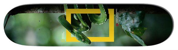 Element Davidson Nat Geo Snake Skateboard Deck 8.25