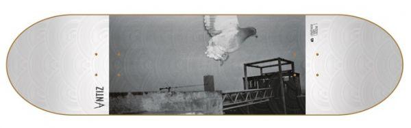 Antiz Pigeon Skateboard Deck 8.125